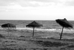mare_inverno_bn.jpg